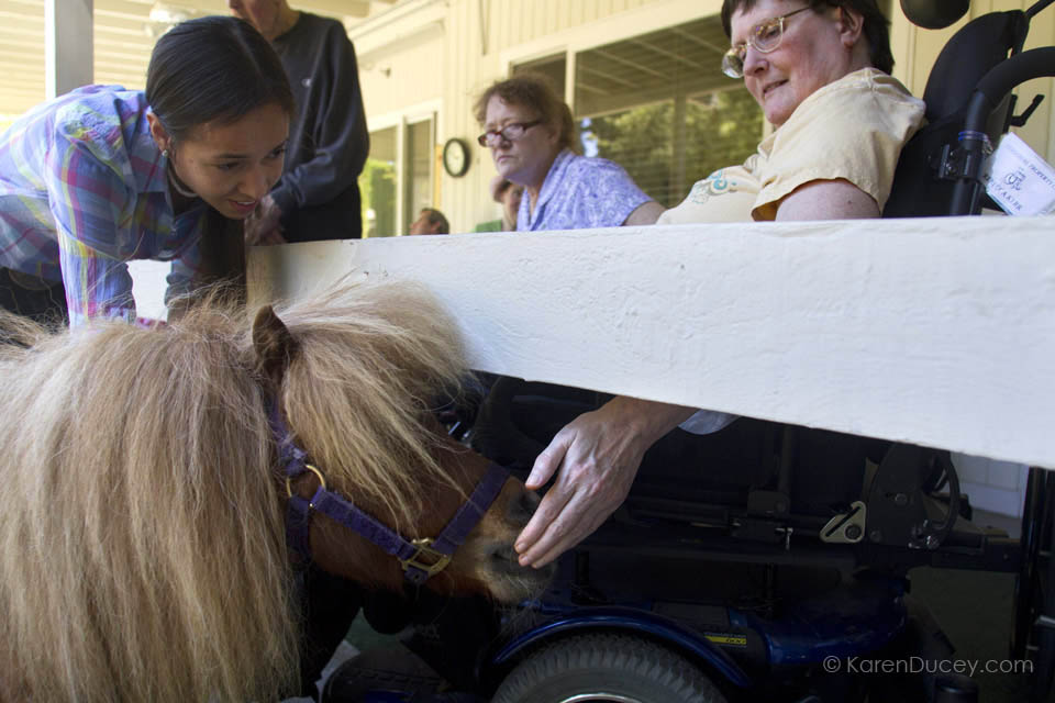 IMAGE: Brooke Ferguson (left) reaches out to pet dwarf miniature horse, Tiny Bubbles, visit with Rebecca Kerr at the Park Ridge Skilled Nursing Center in Shoreline, Washington. (© KarenDucey.com)
