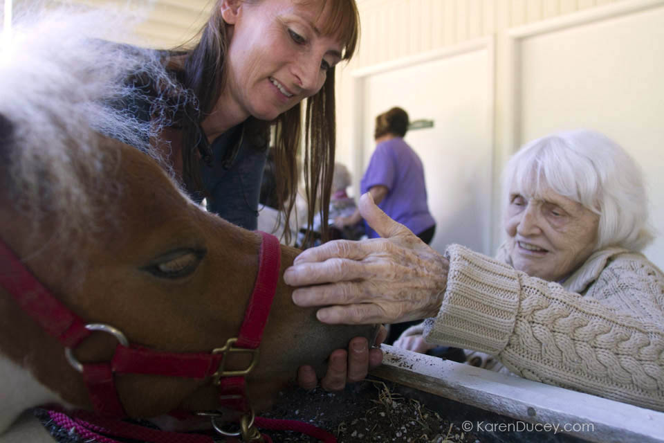 Georgia Lemere pets Tiny Bubbles, a dwarf miniature horse, during her visit with residents at the Park Ridge Skilled Nursing Center in Shoreline, Washington. Veterinarian Dana Bridges Westerman (top right) of Professional Equine Therapeutic arranges the therapy visit every year.
