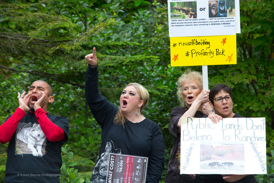 "IMAGE: Protesters rally outside the Washington Department of Fish and Wildlife (WDFW) headquarters in Olympia, Washington against the killing of the Profanity Peak wolf pack in eastern Washington on September 1, 2016. ""It's breaking my heart,"" said Miguel Ramirez, from Portland, OR who says they have the same problem in their state. (photo © Karen Ducey Photography)"