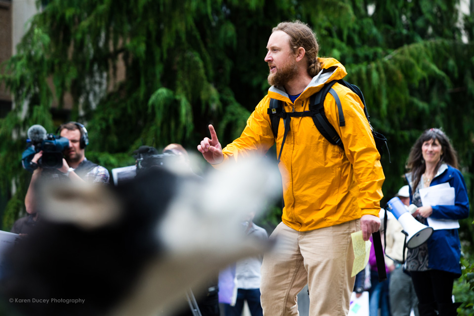 "IMAGE: Brett Haverstick, an activist from Idaho, speaks at a rally outside the Washington Department of Fish and Wildlife (WDFW) headquarters in Olympia, Washington against the killing of the Profanity Peak wolf pack in eastern Washington on September 1, 2016. ""Wolves and livestock cannot coexist. Livestock should be removed from federal lands if wolves are to recover in the west. You can't have both on their landscapes."" he says. Barely visible but loudly heard, Sherman (bottom left), a 5 year-old Siberian Husky belonging to Todd Davison from Olympia, Wash. howls into the crowd.(photo © Karen Ducey Photography)"